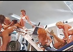 Lesbians Orgy at hand Gym